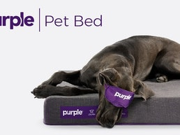 Purple® Pet Bed