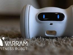 A Smart Robot For Your Pet - VARRAM