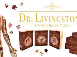Anatomy Jigsaw Puzzles | 10' of Beautiful Human Biology