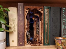 The Everwood Ruins Book Nook